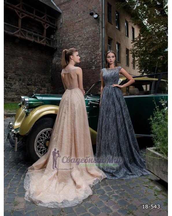 Вечернее платье 18-543